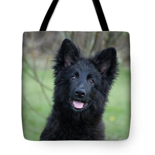 Phoenix Tote Bag by Sandy Keeton
