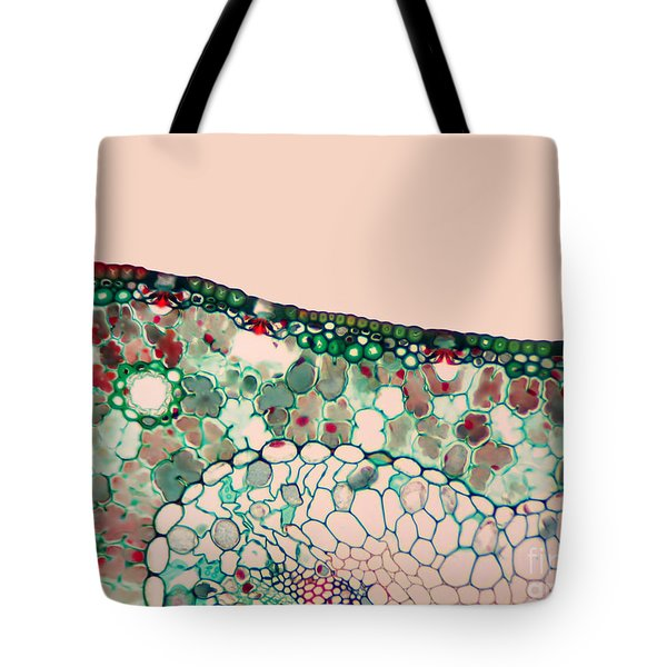 Pine Needle Light Micrograph Tote Bag by Gary DeLong and Photo Researchers