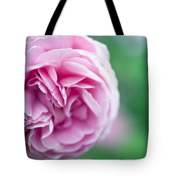 Pink Bourbon Rose LOUISE ODIER Tote Bag by Frank Tschakert