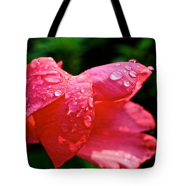 Pink Canna Lily Tote Bag by Susan Herber