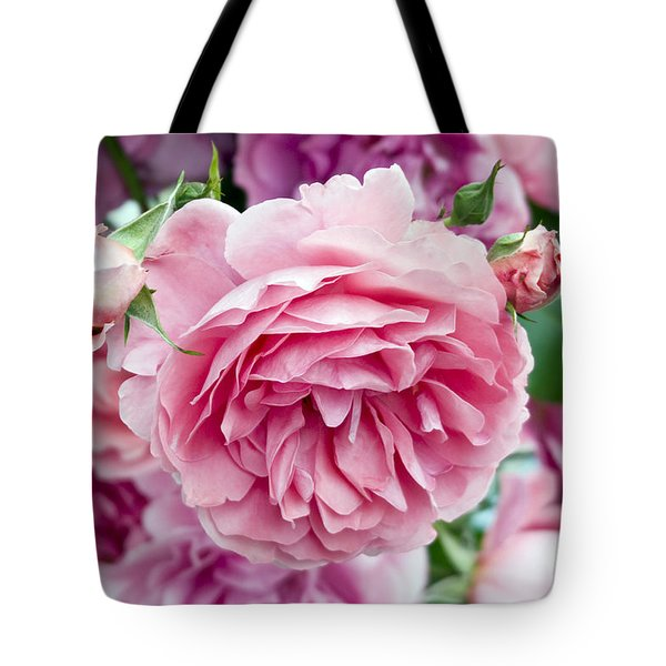 Pink Roses Tote Bag by Frank Tschakert