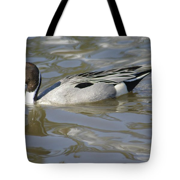 Pintail Duck Tote Bag by Marilyn Wilson