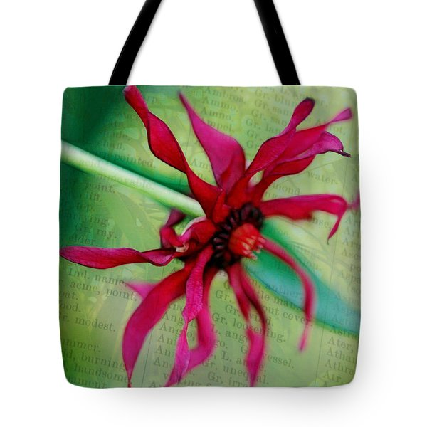 Pinwheel Tote Bag by Judi Bagwell