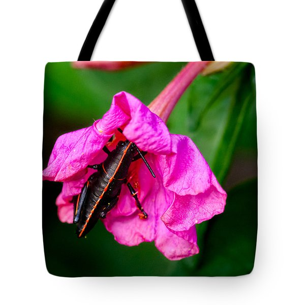 Pit Stop Tote Bag by Christopher Holmes