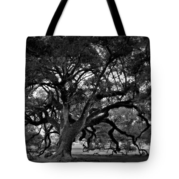 Plantation Oak Tree Tote Bag by Perry Webster