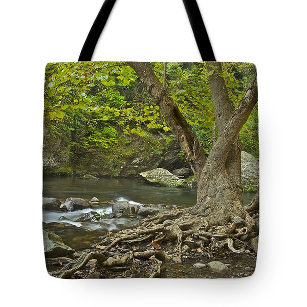 Planted By The Rivers Of Water Tote Bag by Michael Peychich