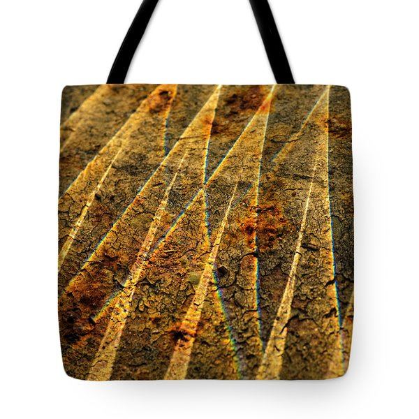 Points Of Light Tote Bag by Susan Capuano