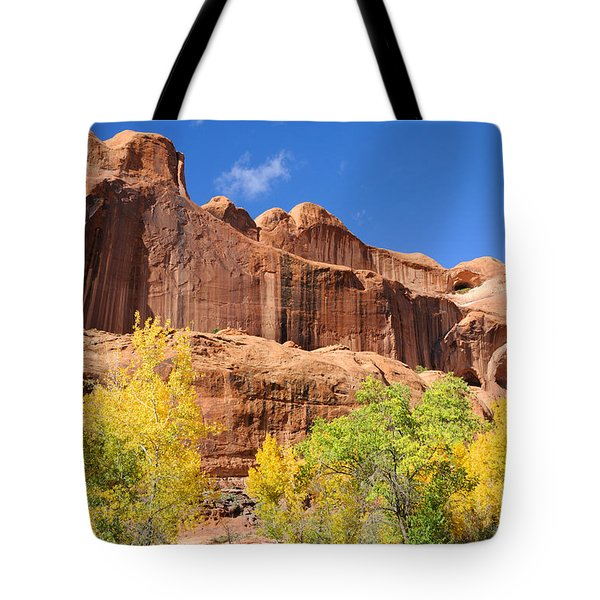 Poison Spider Mesa in the Fall Tote Bag by Gary Whitton