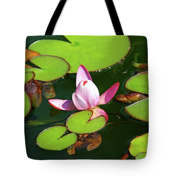 Polish Beauty Tote Bag by Mariola Bitner