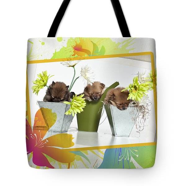 Pomeranian 4 Tote Bag by Everet Regal