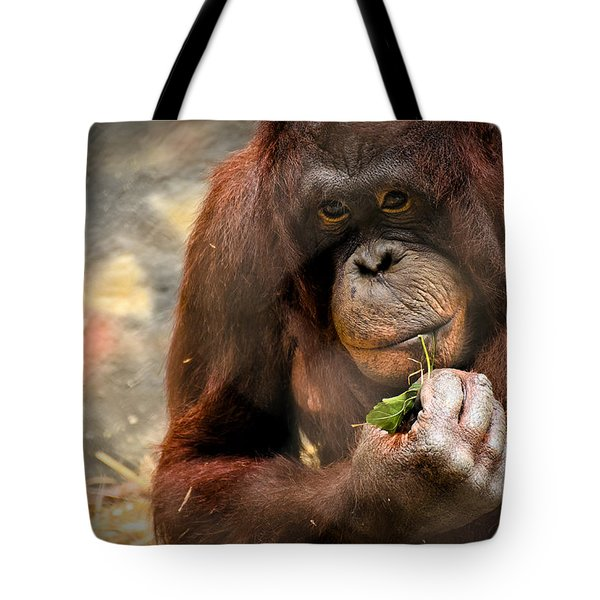 Pondering Tote Bag by Mark Papke
