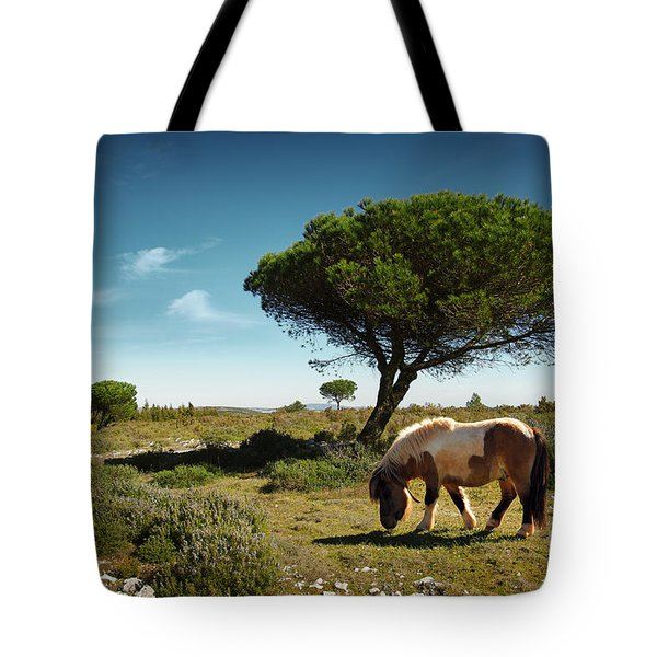 Pony Pasturing Tote Bag by Carlos Caetano