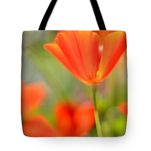 Poppies In The Wind Tote Bag by Heidi Smith