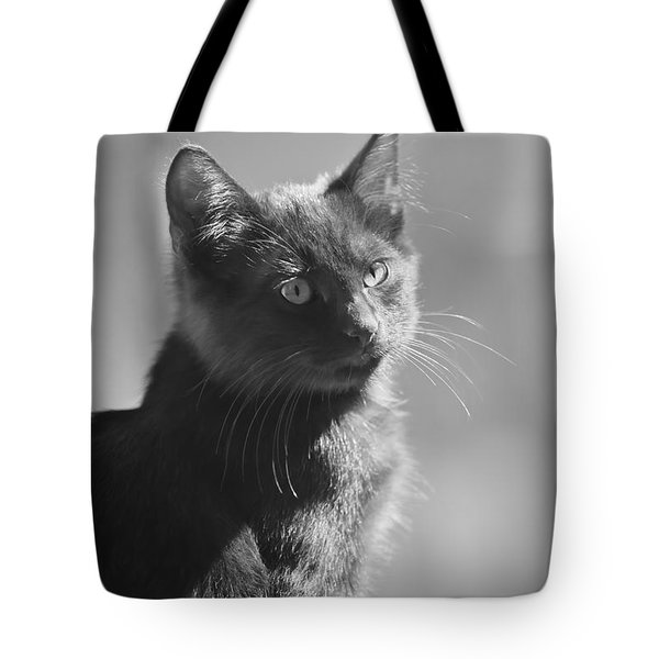 Portrait Of A Kitty Tote Bag by Kim Henderson