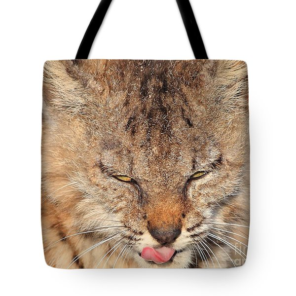 Portrait of a Young Bob Cat 02 Tote Bag by Wingsdomain Art and Photography