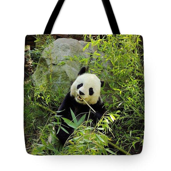 Posing Panda Tote Bag by John  Greaves