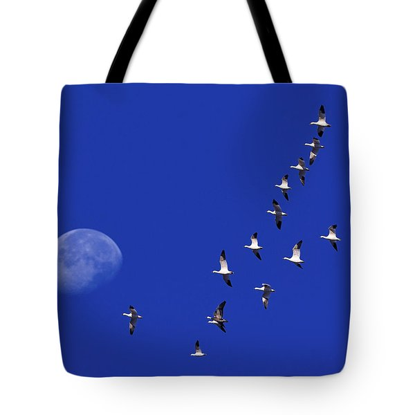 Prairie Migration Tote Bag by Tony Beck
