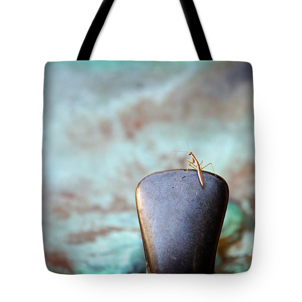 Praying For Water 2 Tote Bag by Andee Design