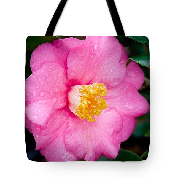Pretty in Pink 2 Tote Bag by Rich Franco