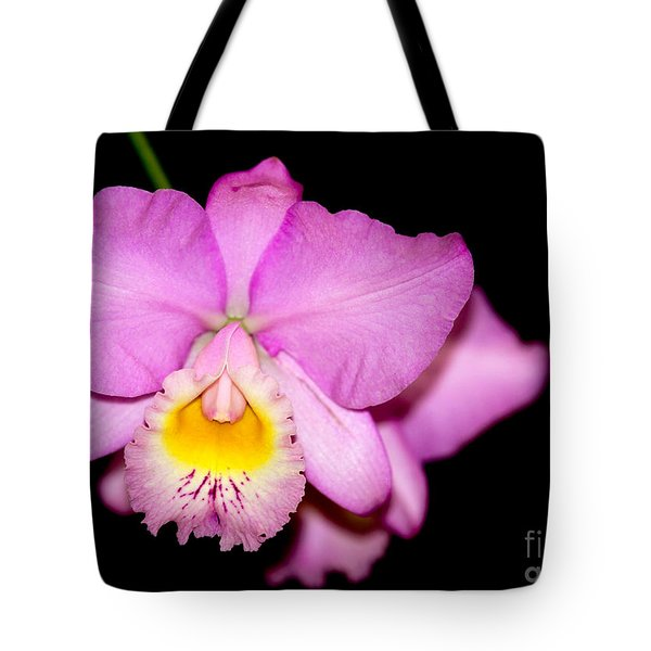Pretty In Pink Orchid Tote Bag by Sabrina L Ryan