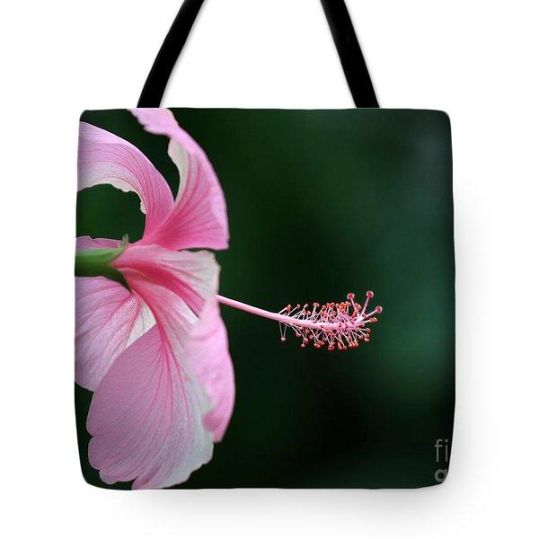 Pretty Pink Hibiscus Tote Bag by Sabrina L Ryan