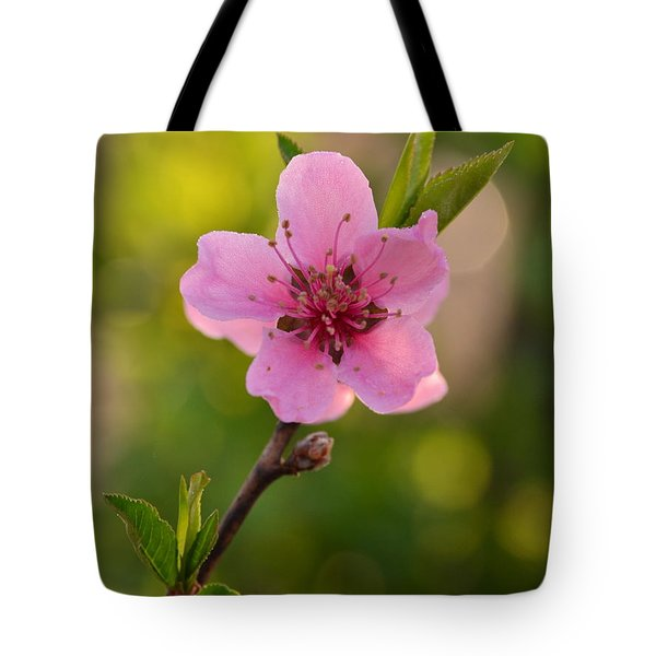 Pretty Pink Peach Tote Bag by JD Grimes