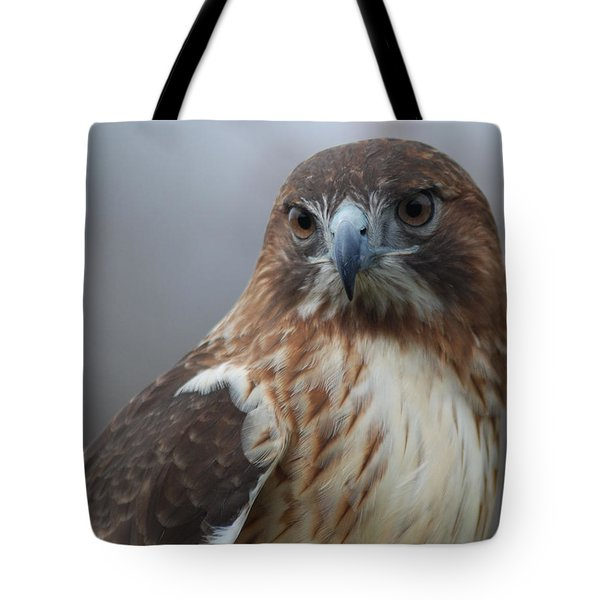 Proud Prince Of The Skies Tote Bag by Richard Bryce and Family