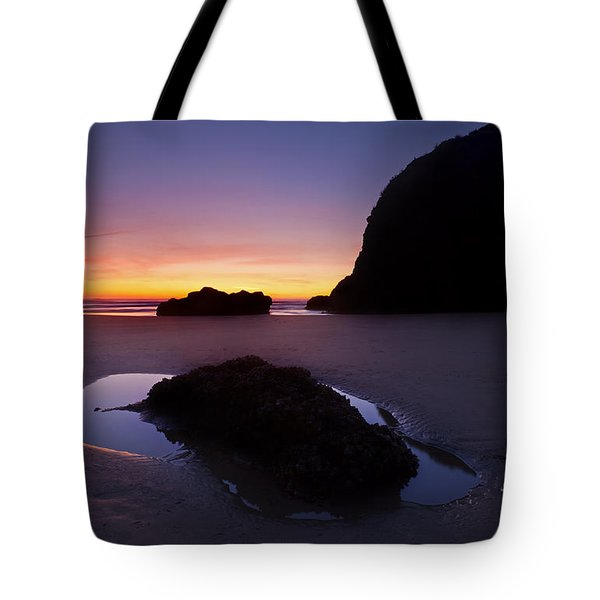 Puddles And Stones Tote Bag by Mike  Dawson