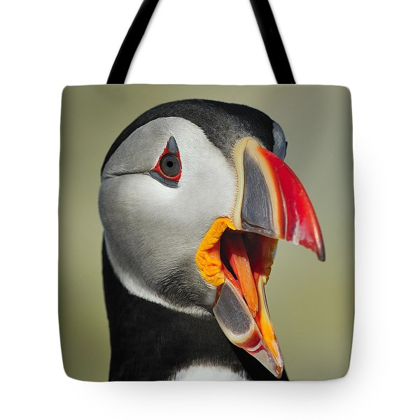 Puffin Portrait Tote Bag by Tony Beck