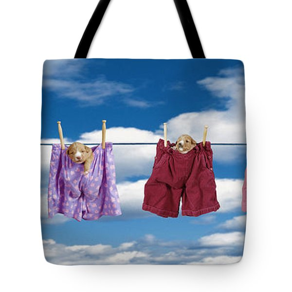 Puppies Hanging Out Tote Bag by Darwin Wiggett