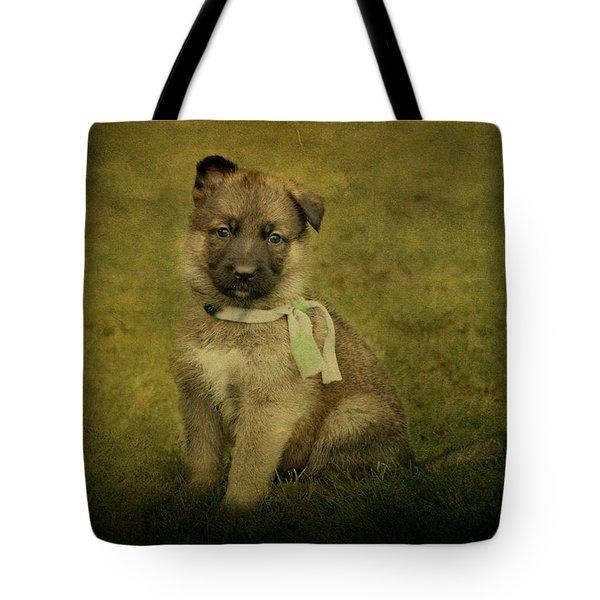 Puppy Sitting Tote Bag by Sandy Keeton
