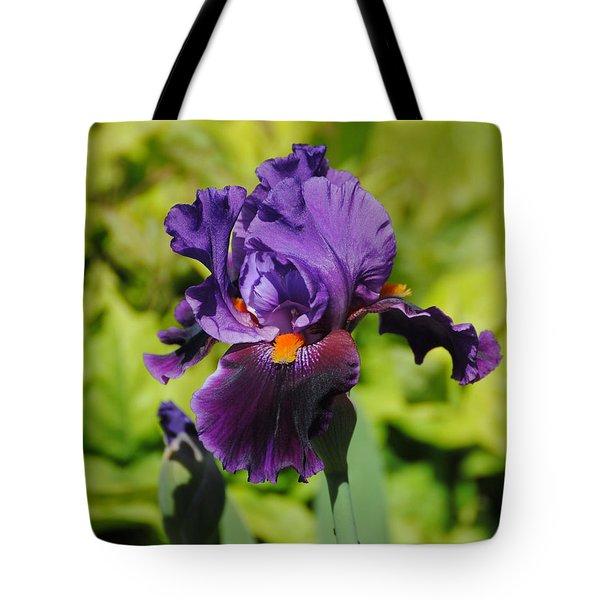 Purple And Orange Iris Flower Tote Bag by Jai Johnson
