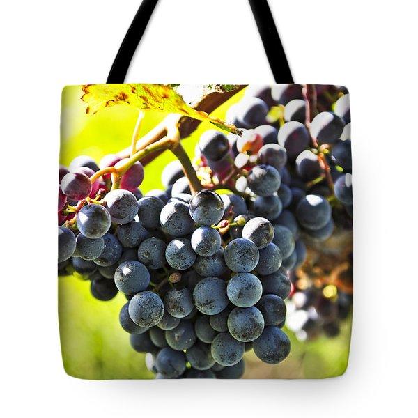 Purple grapes Tote Bag by Elena Elisseeva
