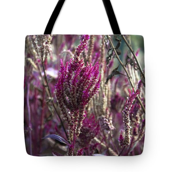 Purple Haze Tote Bag by Bill Cannon