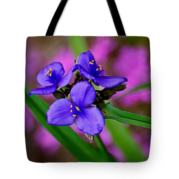 Purple Passion Tote Bag by Marty Koch