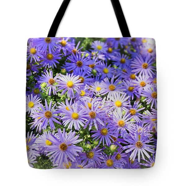 Purple Reigns Tote Bag by Joan Carroll