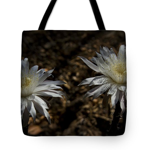 Queen Of The Night Blooms Tote Bag by Saija  Lehtonen