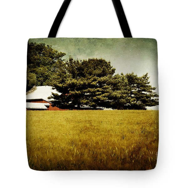 Quiet Tote Bag by Lois Bryan