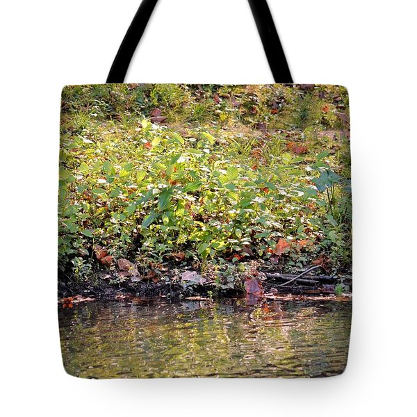 Quiet Moment Tote Bag by Maria Urso