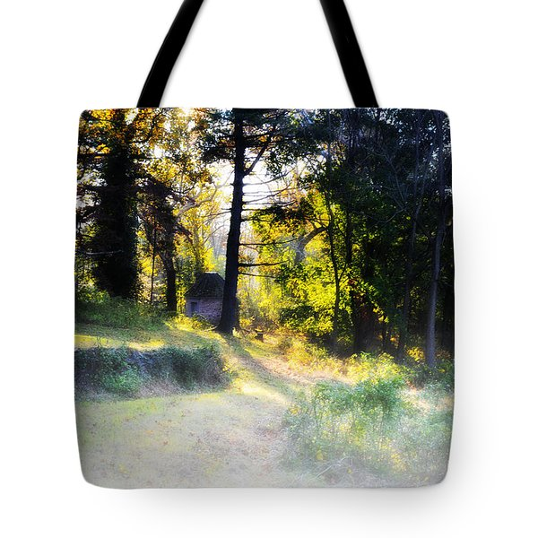 Quiet Morning In The Woods Tote Bag by Bill Cannon