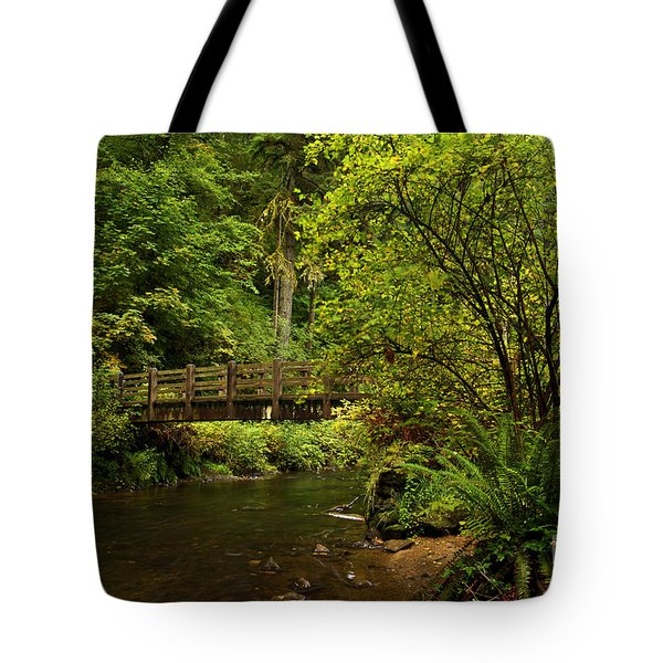 Rain Forest Bridge Tote Bag by Adam Jewell