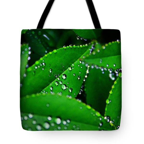 Rain Patterns Tote Bag by Toni Hopper