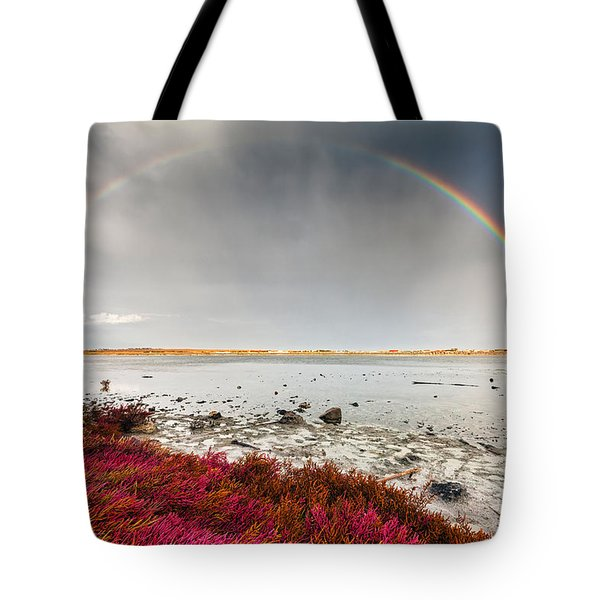 Rainbow By The Lake Tote Bag by Evgeni Dinev