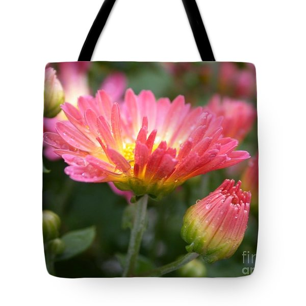 Rainbow Mums Tote Bag by Living Color Photography Lorraine Lynch