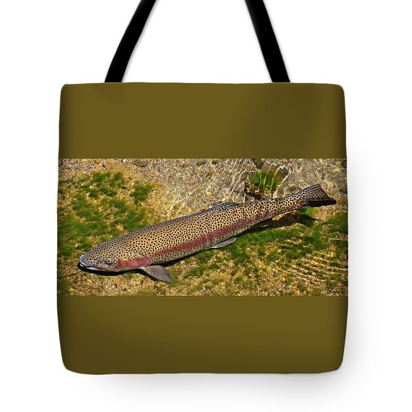 Rainbow Trout Tote Bag by Nick Kloepping