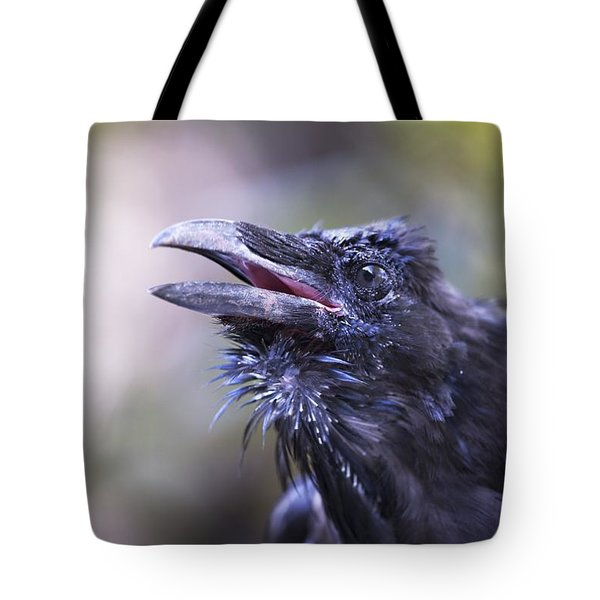 Raven Hyder, Alaska, Usa Tote Bag by Richard Wear
