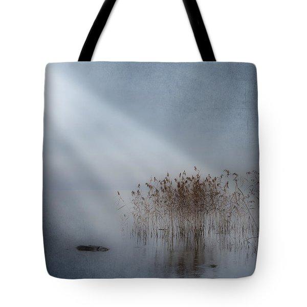 Rays Of Light Tote Bag by Joana Kruse