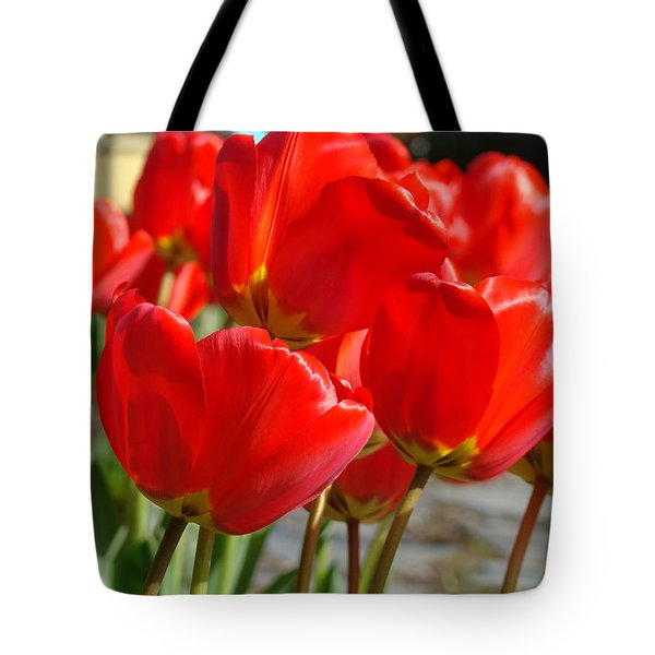 Red Art Spring Tulip Flowers Floral Tote Bag by Baslee Troutman