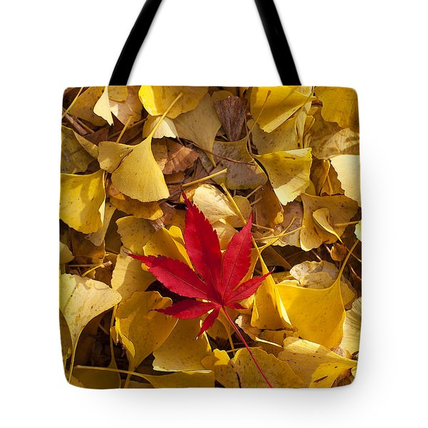 Red Autumn Leaf Tote Bag by Garry Gay