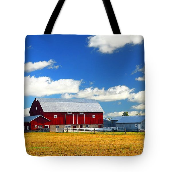Red Barn Tote Bag by Elena Elisseeva